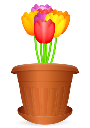 bloempot: Flowerpot bouquet tulips on a white background. Vector illustration. Stock Illustratie