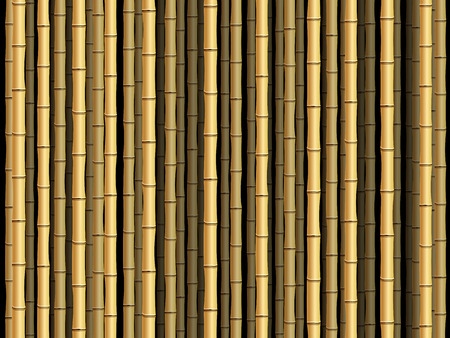 Brown bamboo poles forest background.