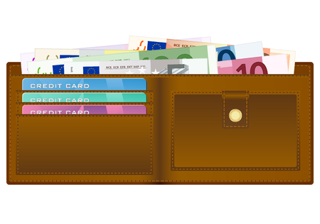 billfold: Open wallet with euro banknotes and credit cards. Vector illustration.
