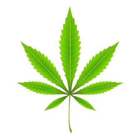 Marijuana leaf on a white background. Vector illustration.