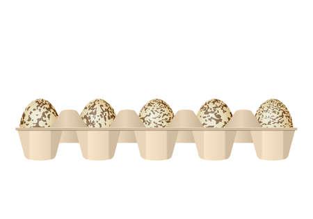 Quail eggs in carton box on a white background.
