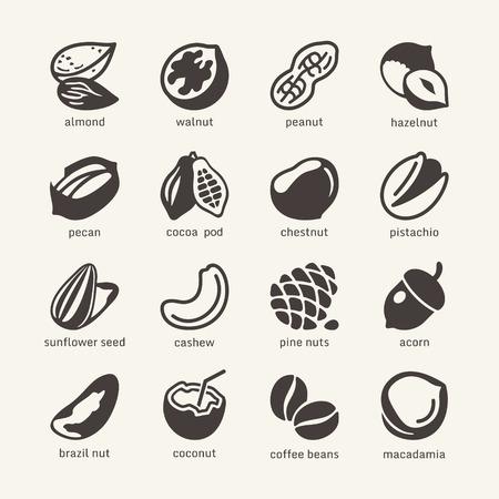 orzechów: 16 Nuts - Kolekcja sieci web ikony Ilustracja