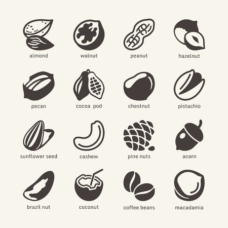 hazelnuts: 16 Nuts - web icons collection