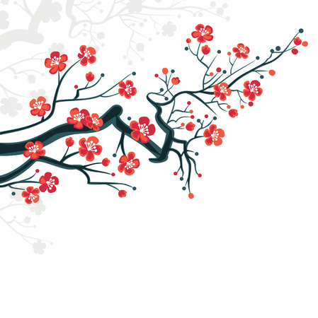 cherry blossom tree:  Сherry blossoms background - spring japanese symbol  Сherry blossoms background - spring japanese symbol  Illustration