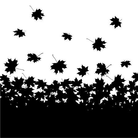 hojas de maple: Fondo del oto�o - hojas de arce Vectores