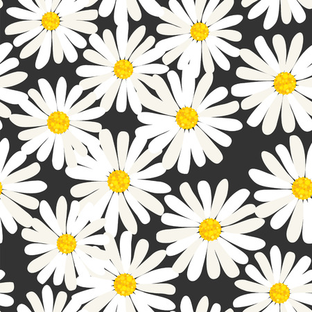 daisy flower: Seamless daisies pattern