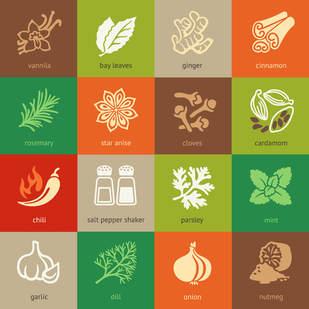ginger root: Colorful web icon set - spices, condiments and herbs