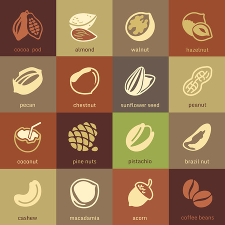 cocoa fruit: Web icons collection - nuts, beans and seed