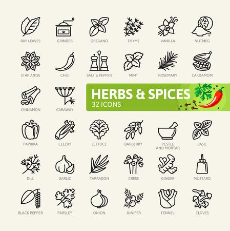 Specerijen, kruiden en specerijen - minimale dunne lijn web icon set. Overzicht pictogrammen collectie. Eenvoudige vectorillustratie.