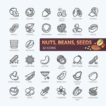 Ikony orzechów i nasion i fasoli