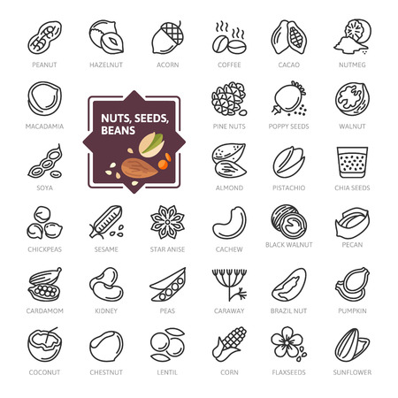 Nuts, seeds and beans elements - minimal thin line web icon set. Outline icons collection. Simple vector illustration. Vettoriali