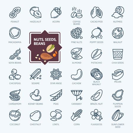Elementos de nueces, semillas y frijoles: conjunto de iconos web de línea delgada mínima. Colección de iconos de contorno. Ilustración vectorial simple