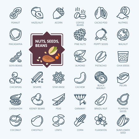 Nuts, seeds and beans elements - minimal thin line web icon set. Outline icons collection. Simple vector illustration. Vectores