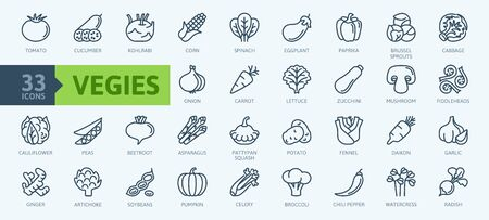 Vegetarian, vegetable, veggies - minimal thin line web icon set. Included the simple vector icons as tomato, cucumber, kohlrabi, cauliflower, pattypan squash, fiddleheads, daikon. Outline icons collection.