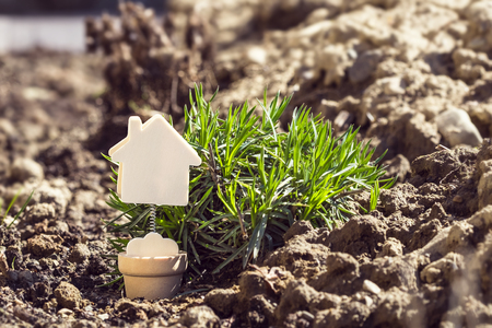 House model minature on earth background with green grass. Real estate, rent, sale or buying property concept Stock Photo