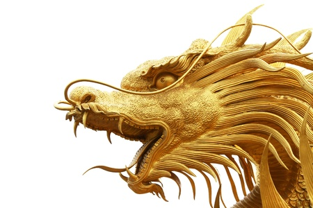 fantasy dragon: Gold dragon statue isolated on white background