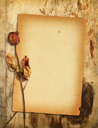 Old paper with dried rose on wooden background Stock Photo - 12747784