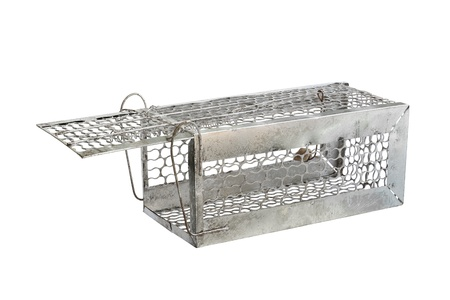 pitfall: Mousetrap (rat cage) isolated on white background