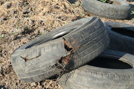 expire: Old and damage tire on the ground