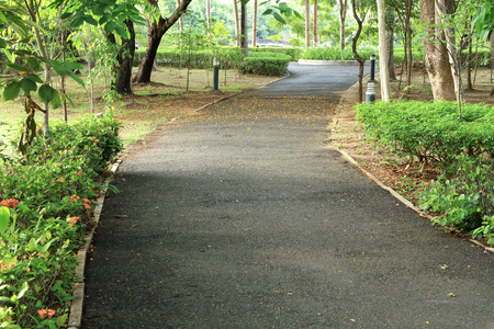 Walking path in the park photo