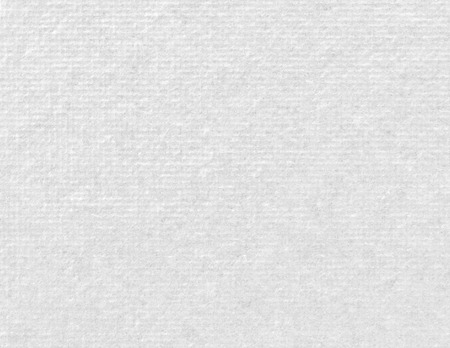 White paper texture background 免版税图像