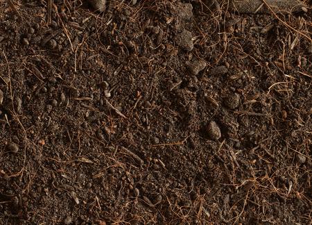 turba: Suelos de turba textura de fondo Foto de archivo