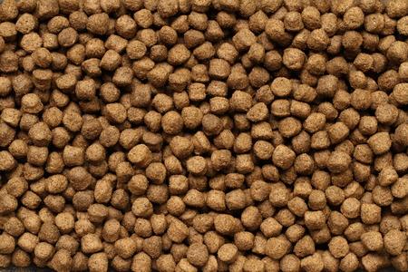 aliments pour animaux de compagnie à sec Banque d'images