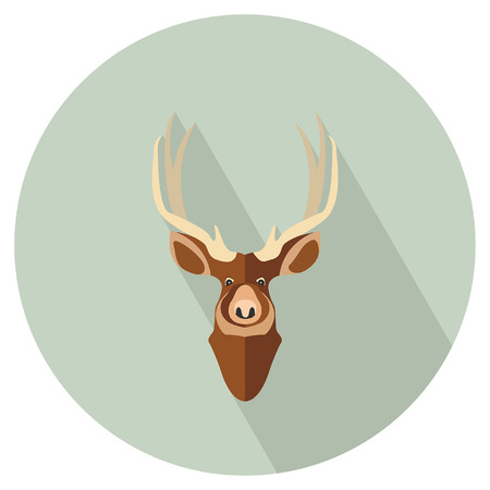 Swamp deer head Çizim