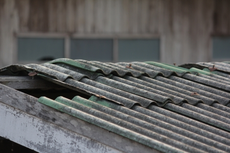 deteriorate: old green roof, weather,edelmetall, deteriorate