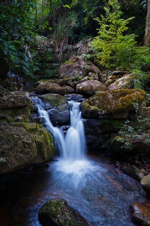 water fall: evergreen water fall Stock Photo