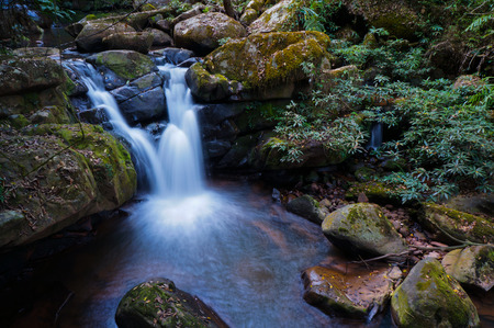 water fall: water fall in forest