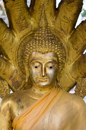 cabeza de buda: the Buddha head in thai temple