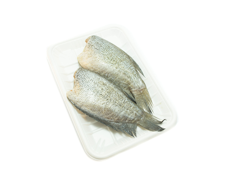 pectoralis: Snake Skin Gourami Fish(Trichogaster pectoralis) on white background Stock Photo