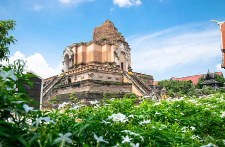 Wat Chedi Luang is a buddhist temple in Chiang Mai, north of Thailand, historic building famous for tourism.