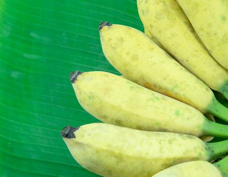 Cultivated banana on banana leaves, Thai banana