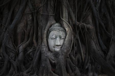tat: Wat Maha Tat Stock Photo