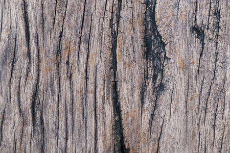 wood surface: weathered wood surface background
