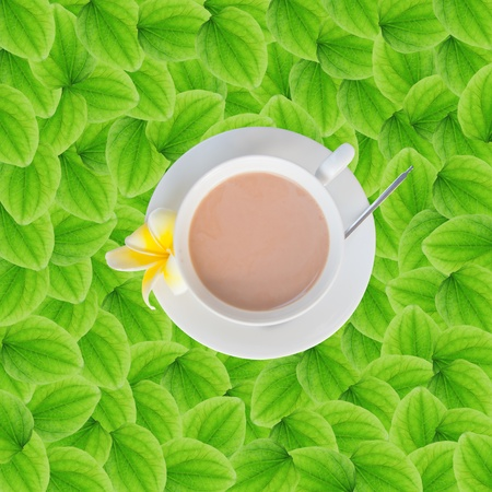 Coffee Cup on Green Leaf Background photo