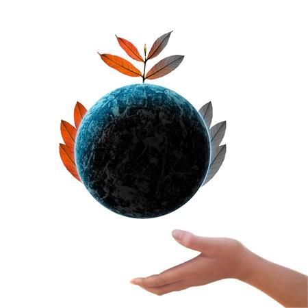 Tree on the  Earth  of environmental Stock Photo - 13074832