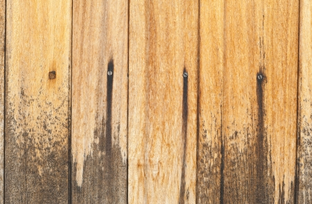 Abstract Wood texture and  background  photo