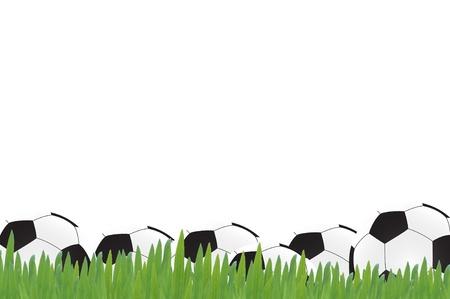 Football soccer on green grass, white background Stock Photo - 13883961