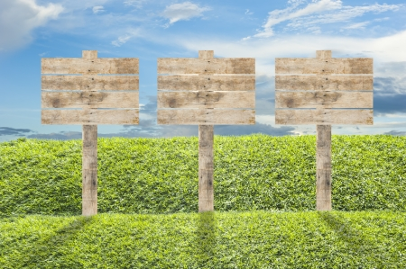 Wooden billboard on the grass background Stock Photo - 13892647