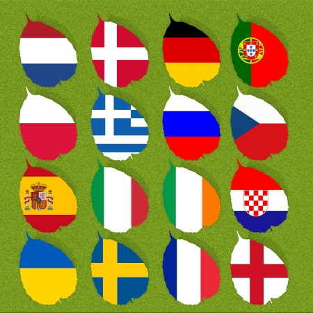 Flag of football soccer on green grass background photo