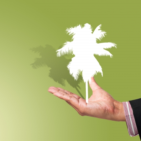 Coconut tree of paper cut on hand background photo