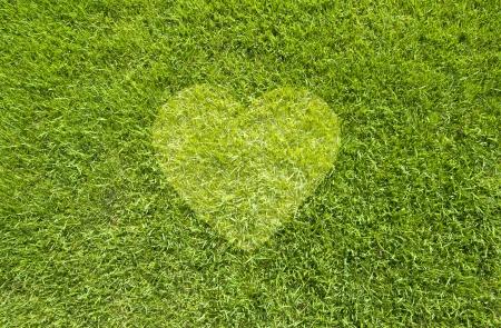 Icon Heart on green grass,  texture background Standard-Bild