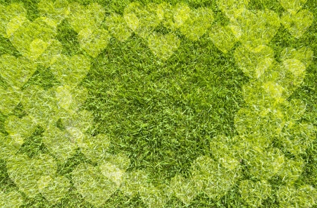 Icon Heart on green grass,  texture background photo