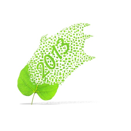 Green leaf of 2013 year on white background photo