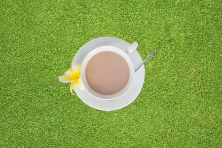 Coffee on green grass  background photo