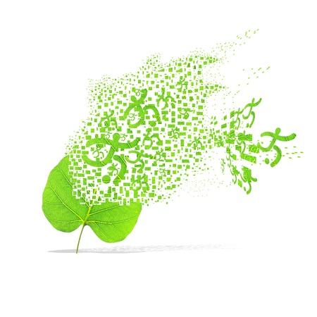 Green leaf of sport football on white background photo