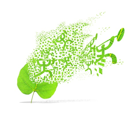 Green leaf of sport weight on white background photo
